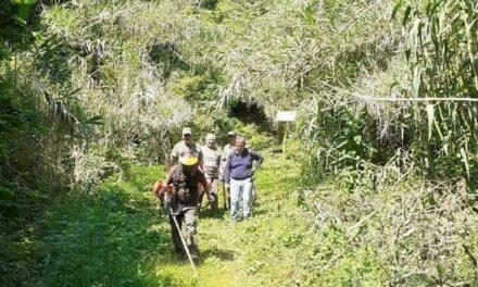 Les chasseurs de la Falicouniera mobilisés pour notre environnement